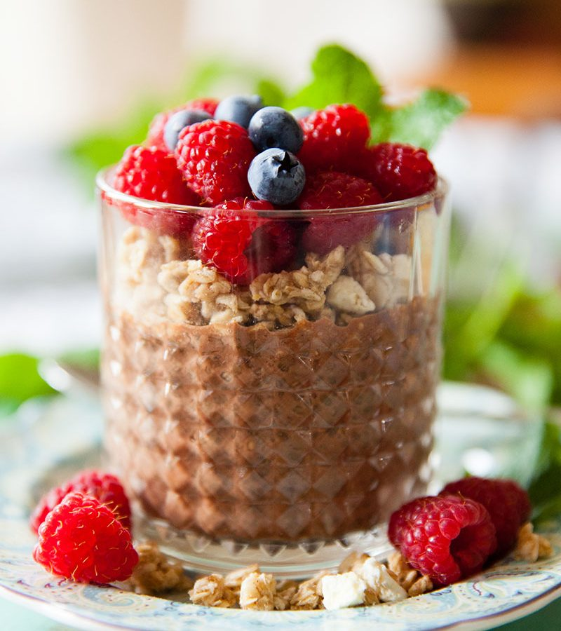 Chocolate Chia Pudding For One | One in the Kitchen